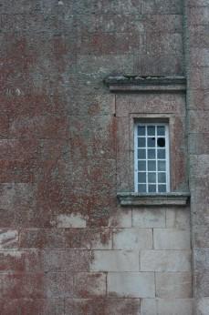 El musgo bordado sobre uno de los muros de la catedral. Miranda do Douro. LeleSorribas2013