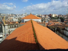 Vista sobre el tejado de la Iglesia de los Clérigos. LeleSorribas2014